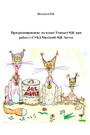 Программирование на языке Transact SQL при работе с СУБД Micriosoft SQL Server